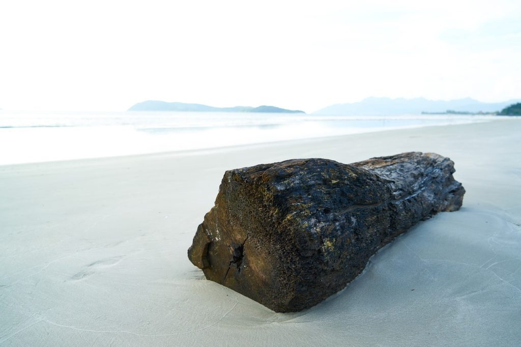 Am Strand kann man auch selbst Treibholz sammeln